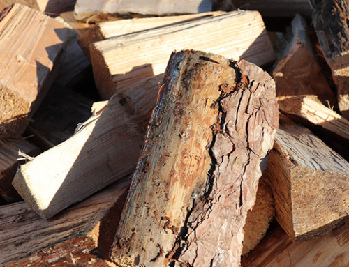 Keep Your Logs Dry – How to Store Your Firewood